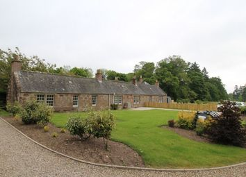 Thumbnail 3 bed bungalow to rent in Fettercairn, Laurencekirk