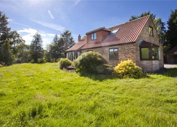 Thumbnail 3 bed bungalow to rent in Newlands Farm, Shipton Lane, Wigginton, York