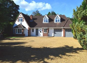 Thumbnail 5 bed detached house to rent in Heath Road, Thorpe End, Norwich
