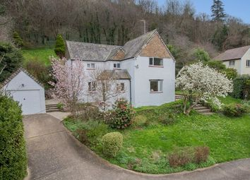 Thumbnail 3 bedroom detached house for sale in Ilsham Road, Torquay