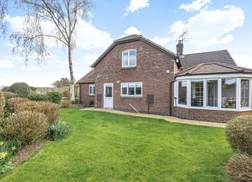 Thumbnail 4 bed detached bungalow for sale in Kingsland, Herefordshire