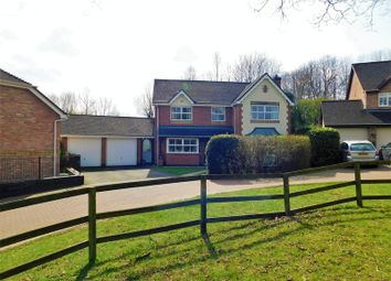 Thumbnail 4 bed detached house for sale in Kingfisher Drive, Colwich, Stafford
