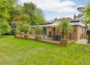 Thumbnail 3 bed detached bungalow for sale in Norton, Bury St. Edmunds, Suffolk