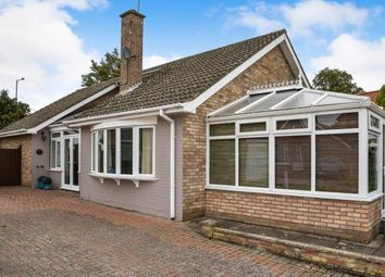 Thumbnail 4 bed bungalow for sale in South Wootton, Kings Lynn, 4 Bedrooms