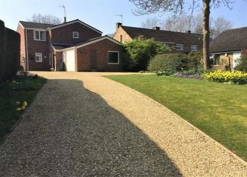 Thumbnail 3 bed detached house to rent in High Street, Sharnbrook, Bedford