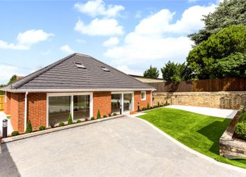 Thumbnail 4 bed bungalow for sale in Dyke Road, Hove, East Sussex