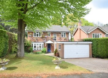 Thumbnail 4 bed detached house for sale in Robin Hill Drive, Camberley, Surrey