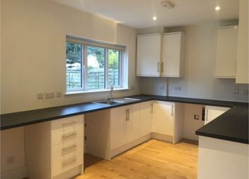 Thumbnail 3 bed semi-detached house to rent in Palm Grove, Ealing, London