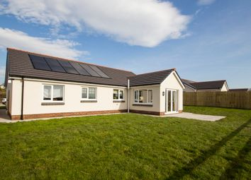 Thumbnail 3 bed detached bungalow for sale in Rhosybonwen Road, Cefneithin, Llanelli