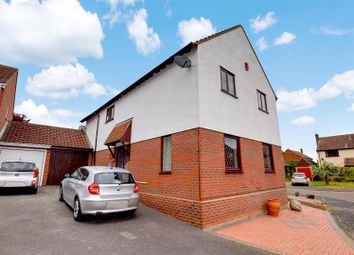 Thumbnail Detached house for sale in Heron Road, Kelvedon, Colchester