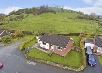 Thumbnail 3 bed detached bungalow for sale in Bryn Cain, Llansantffraid