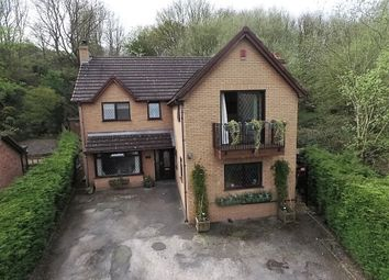 Thumbnail 4 bed detached house for sale in Pendwll Road, Moss, Wrexham