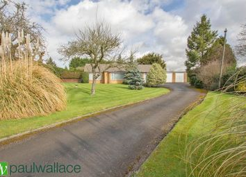 Thumbnail 3 bed bungalow for sale in Hamlet Hill, Roydon, Harlow