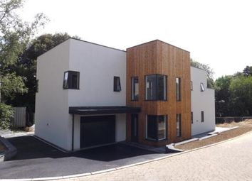 Thumbnail 4 bed detached house for sale in Mile End Road, Newton Abbot