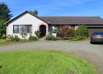 Thumbnail 4 bedroom detached bungalow for sale in Crudie, Turriff, Aberdeenshire