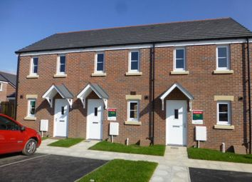 Thumbnail 2 bed property to rent in Cwrt Y Llwyfen, Llysonnen Rd, Carmarthen