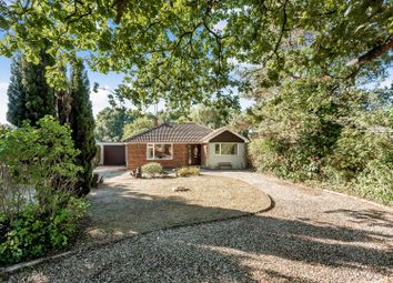 Thumbnail 3 bed detached bungalow for sale in Arbor Lane, Winnersh, Berkshire