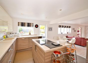 Thumbnail 5 bed detached house for sale in Hollow Glade, Godshill, Ventnor