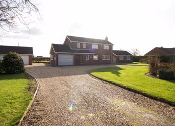 Thumbnail 4 bed detached house for sale in Main Road, Maltby Le Marsh