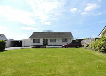 Thumbnail 3 bed detached bungalow for sale in Church Lane, Narberth, Pembrokeshire