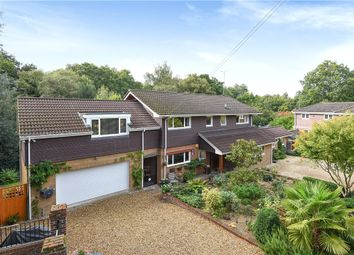 Thumbnail 5 bedroom detached house for sale in Cricket Hill Lane, Yateley, Hampshire