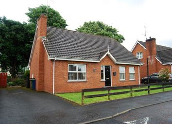 Thumbnail 4 bed detached house for sale in Forest Glade, Lurgan