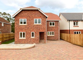 Thumbnail 6 bed detached house for sale in Beech Close, Spetisbury, Blandford Forum, Dorset