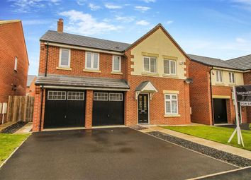 Thumbnail 5 bed detached house to rent in Ayle Grove, Whitley Bay