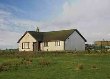 Thumbnail 4 bedroom bungalow for sale in Occumster, Lybster, Caithness, Highland