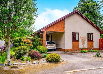 Thumbnail 3 bed bungalow for sale in Birch Drive, Maryburgh, Dingwall