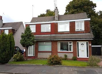Thumbnail 4 bed semi-detached house to rent in Avonbrae Crescent, Hamilton