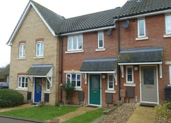 Thumbnail 2 bedroom terraced house to rent in Beech Court, Long Stratton, Norfolk