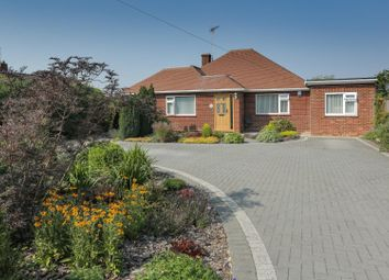 Thumbnail 3 bed detached bungalow for sale in 25 Plantation Road, Chestfield, Whitstable