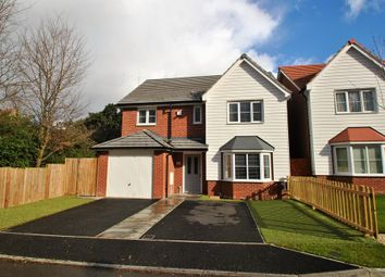 Thumbnail 4 bed detached house for sale in Willowbrook Close, Herne Bay