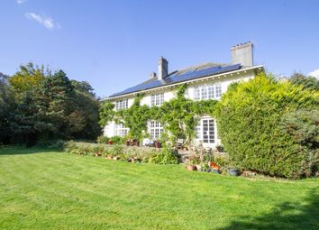 Whitchurch, Tavistock PL19. 5 bed detached house for sale