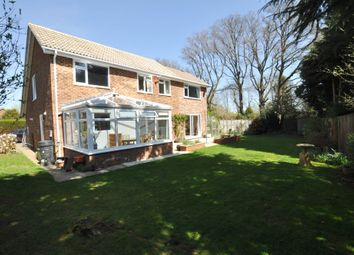 Thumbnail 4 bed detached house for sale in The Paddocks, Normandy, Guildford
