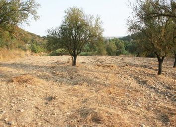 Thumbnail Land for sale in Giolou, Paphos, Cyprus