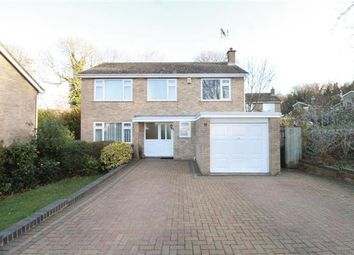 Thumbnail 4 bedroom detached house for sale in Badgers Bank, Ipswich