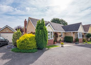 Thumbnail 3 bed detached bungalow for sale in Sweet Briar Close, Leavenheath, Colchester