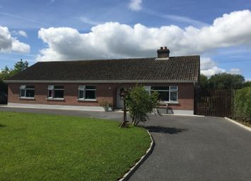 Thumbnail 4 bed detached house for sale in Kilcolumb, Cloonminda, Williamstown, Galway