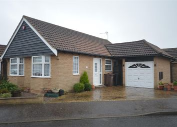 Thumbnail 2 bed detached bungalow to rent in Fuchsia Way, Clacton-On-Sea