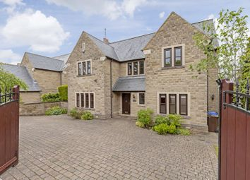 Thumbnail 4 bed detached house to rent in Bushey Wood Grove, Sheffield