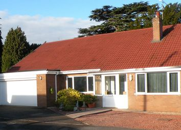 Thumbnail 4 bed detached bungalow for sale in Blake Close, Wistaston, Crewe
