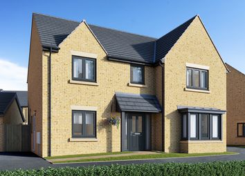 "Thumbnail 4 bed detached house for sale in ""The Cottingham"" at Field Road, Ramsey, Huntingdon"