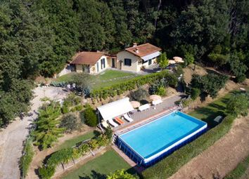 Thumbnail 2 bed cottage for sale in Pian di Mommio, Massarosa, Lucca, Tuscany, Italy