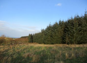 Thumbnail Land for sale in New Aberdour, Fraserborough