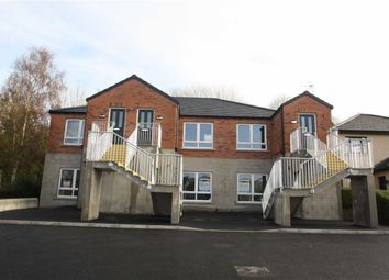 Thumbnail 2 bed flat to rent in Lisburn Road, Ballynahinch, Down