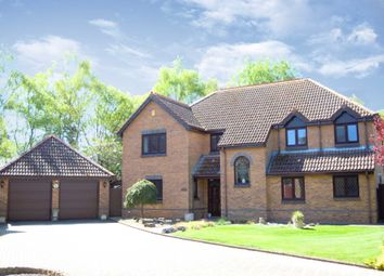 Thumbnail 5 bed detached house for sale in Alder Close, Newton Abbot