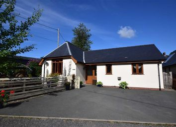 Thumbnail 2 bed detached bungalow for sale in Maes Y Blodai, Llanbrynmair, Llanbrynmair, Powys