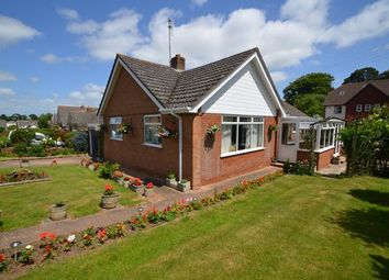 Thumbnail 2 bed detached bungalow for sale in Little Down Orchard, Newton Poppleford, Sidmouth
